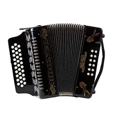 Rizatti Bronco RG31GB Diatonic Accordion – Black – Key G/C/F