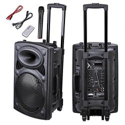 AW Portable 120W Active PA Speaker Mic Guitar AMP Bluetooth USB SD LCD FM Remote w/Wireless Micr ...