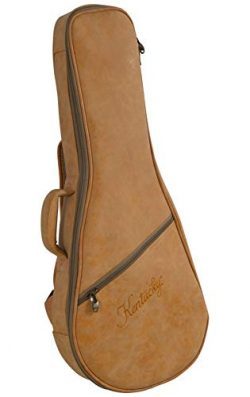 Kentucky ProTour BV-2012 NuHyde Mandolin Gig Bag A or F Model