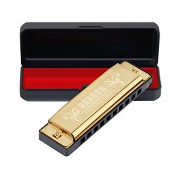 Randon Harmonica, Blues Harmonica Key of C 10 Holes 20 Tones Mouth Organ C Harmonica for Kids, A ...