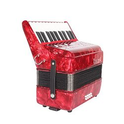 Festnight 22-Key 8 Bass Piano Accordion with Straps Gloves Cleaning Cloth Educational Music Inst ...