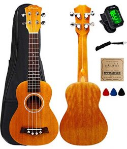 Vizcaya Soprano Ukulele Mahogany 21 inch stain finish with Ukulele Accessories, 5mm Sponge Paddi ...