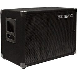 Seismic Audio – 15″ Bass Guitar Speaker Cabinet 300 Watts RMS 115 Speakers 1×15