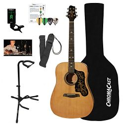 Sawtooth Acoustic Dreadnought Guitar (Custom Pickguard) with Case, Tuner, Stand, Strap, Picks &a ...