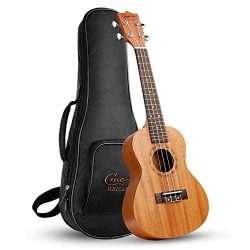 Concert Ukulele 21 Inch for Beginners Kids