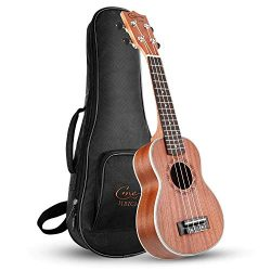 Concert Ukulele 21 Inch Wooden Professional Ukulele,Hawaii Ukulele for Beginners & Kids