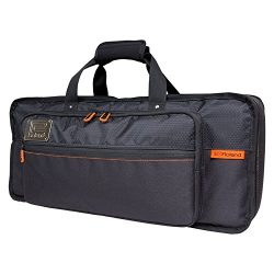 Roland JD-XI Synthesizer Bag (CB-BJDXI)