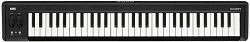 Korg Keyboard Amplifier, 61-Key (MICROKEY261)