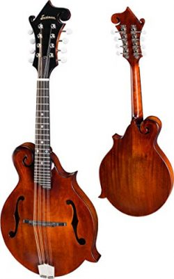 Eastman MD515CC/n F-Style Mandolin, F-Holes with hard case
