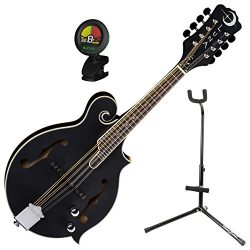 Luna Acoustic/Electric F Style Moonbird Design Mandolin w/ Tuner and Stand